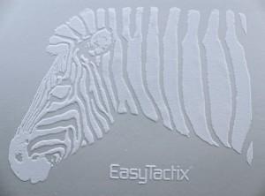EasyTactix_sample3